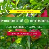 Осенняя распродажа декоративных растений, в Москве