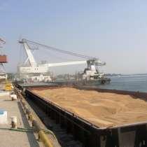 Кукуруза, ячмень экспорт в Оман, в Москве
