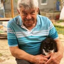 Владимир, 66 лет, хочет пообщаться, в Красноперекопске