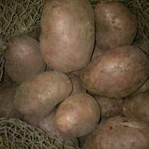 Продам картофель, в Чите