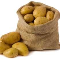 Картофель, в Брянске