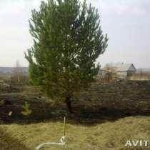 Куплю Преобрету стройматериалы в обмен на сад, в Челябинске
