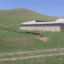 ФЕРМА в УЗБЕКИСТАНЕ с 300 гектаром земли, в г.Ташкент
