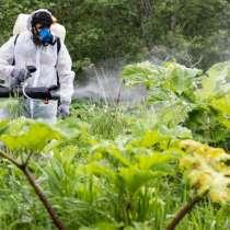 Химическая обработка гербицидами растительности (в том числ, в г.Минск