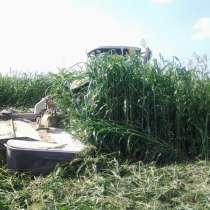 Семена сорго-суданкового гибрида Сабантуй и Сосед, в Краснодаре