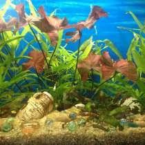 Светодиодные Светильники для аквариумов, в Екатеринбурге