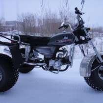 Трицикл, в Архангельске