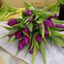 8 Марта без тюльпана - не праздник!, в Зарайске