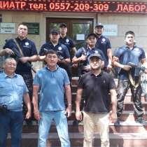 "ОсОО ""ОДА Слон"", в г.Бишкек"