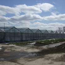 Продаётся хозяйство: тепличный комплекс 17 Га, в Краснодаре