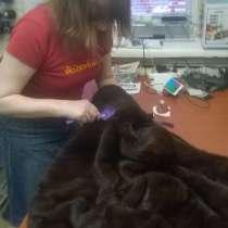Ателье по ремонту и пошиву одежды, в Москве