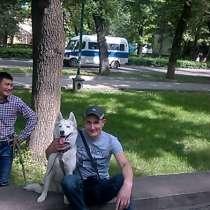 Александр, 39 лет, хочет пообщаться, в г.Бишкек