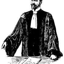Судебный адвокат, арбитраж, в Воронеже