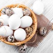 Яйца домашние куриные и перепелиные, в Анапе