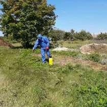 Обработка участка гербицидами, в г.Могилёв