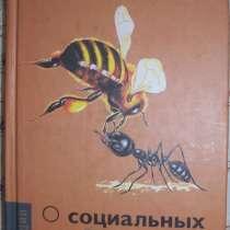 О социальных системах, в Новосибирске