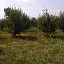 Земельный участок, в г.Баку