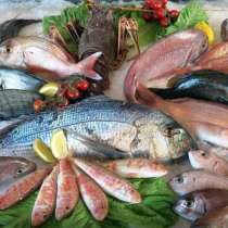 Рыба! Рыба! Рыба!, в г.Бишкек