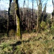 Продажа земельного участка 8,5 сот в Хосте г. Сочи, в Сочи