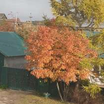 Вадим, 51 год, хочет пообщаться, в Нижнем Новгороде