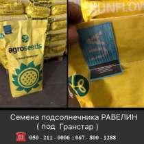 Семена подсолнечника Равелин (под гранстар), в г.Курахово