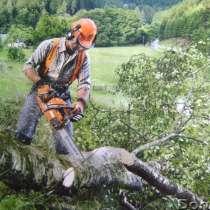 Опил деревьев, покос травы триммером в Воронеже, в Воронеже