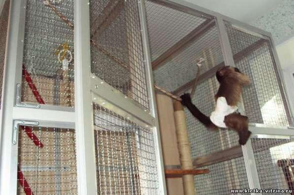 Клетки - вольеры для обезьян, лемуров в Москве фото 3