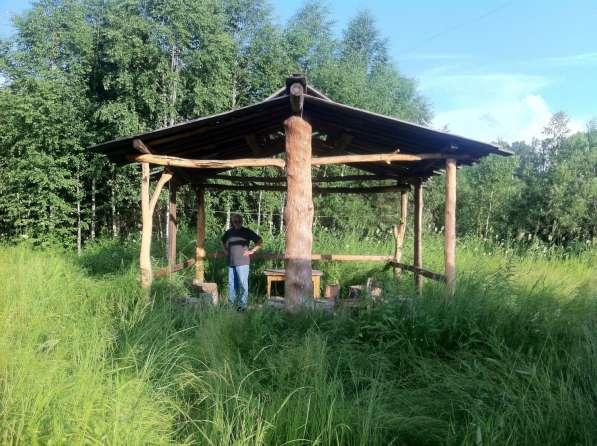 Продам дачу в Новосибирске фото 6