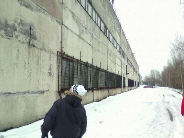Производственно складская база в Санкт Петербурге в Санкт-Петербурге фото 3