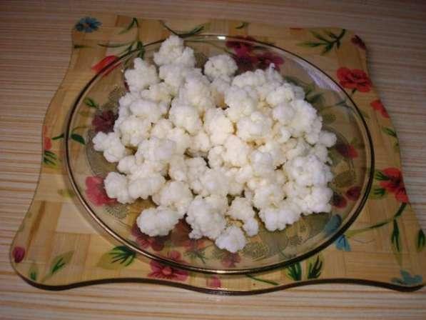 Молочный (тибетский) гриб