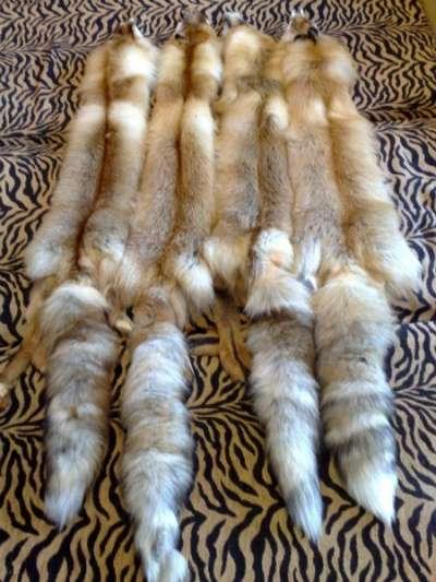 Меховые изделия кожа Сибирская лиса