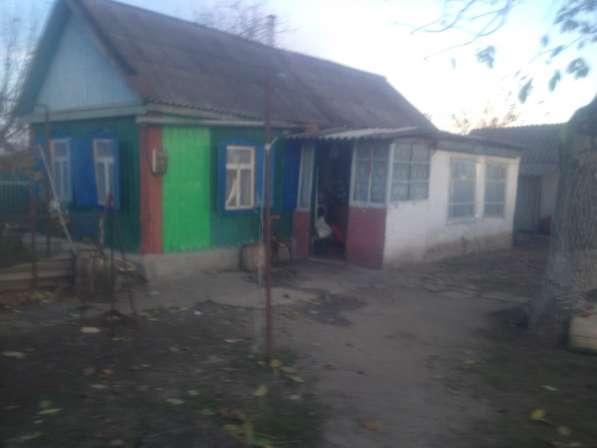 Домовладение хутор Раздольный Армавир