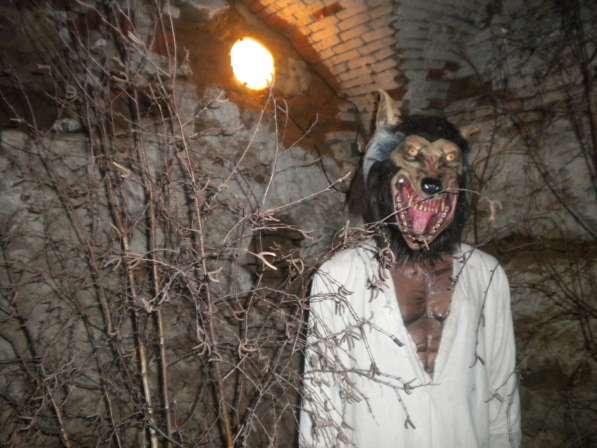 Музей вампиризма и алхимии в фото 3