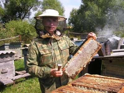 мёд цветочный 100% натуральный