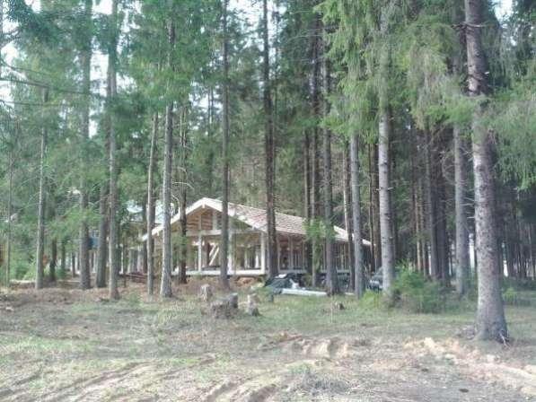 Участок в поселке бизнес-класса, под ПМЖ, лес
