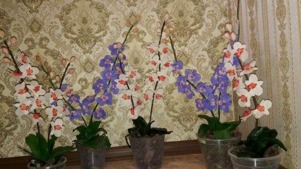 Орхидеи из холодного фарфора