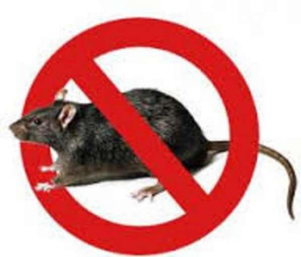Средство от крыс и мышей (ядоприманка. парафин)