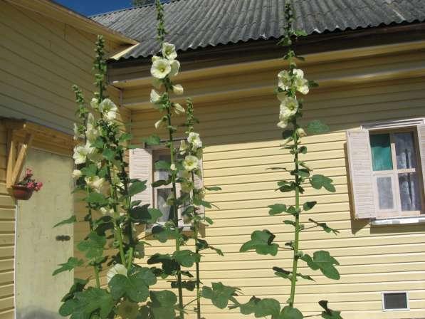 Дом в живописном месте Костромское направление Сахареж в Ярославле фото 9