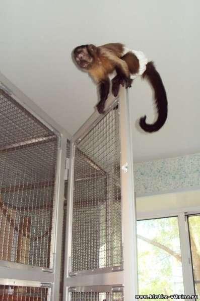 Клетки - вольеры для обезьян, лемуров в Москве фото 6