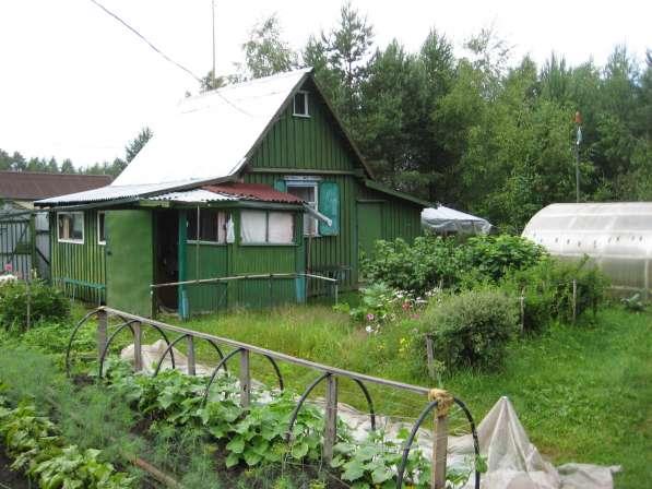 Продаю дачный участок с домом