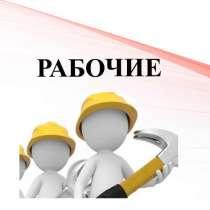 Удостоверения рабочих специальностей, в Воронеже