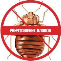 Уничтожение клопов в квартире, в г.Минск