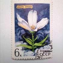 Марка 6к 1977 год СССР Ясколка Крупная, в Москве