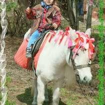 Катание на лошадке-ПОНИ, в Кирове