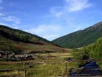 20 ГА на Алтае у трассы м-52,обмен, в Горно-Алтайске