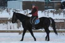 Вороной конь, в Екатеринбурге