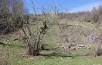 Продаю земельный участок в Сочи, Мацеста, в Сочи