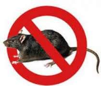 Средство от крыс и мышей (ядоприманка. парафин), в г.Симферополь