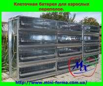 Перепелиная ферма - лучший домашний бизнес, в г.Харьков