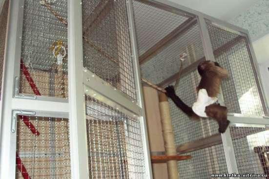 Клетки - вольеры для обезьян, лемуров в Москве Фото 2
